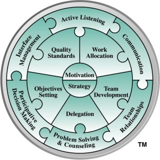 Margerison-McCann Linking Leader Model