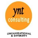 ynt consulting (USA)